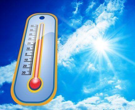 Cómo combatir el exceso de calor.