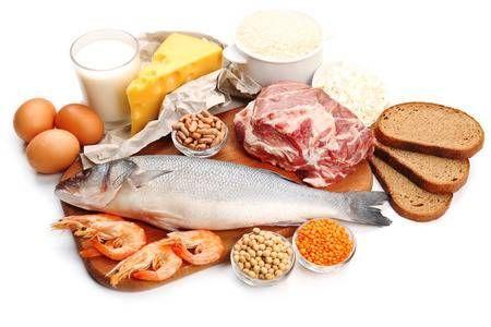 La importancia de las proteínas.
