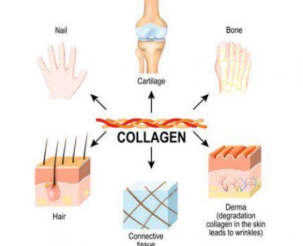 9 beneficios del colágeno para la salud: