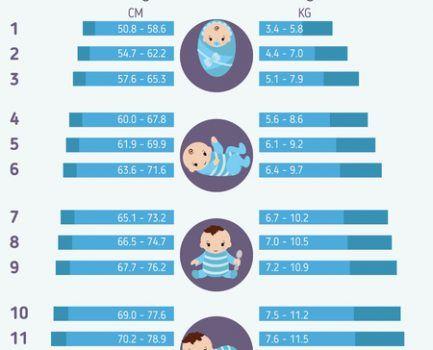 Tabla de crecimiento y desarrollo: como evalúa el crecimiento de su hijo.