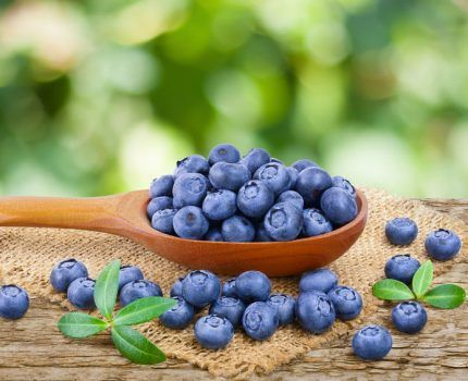 Las antocianinas, antioxidantes estrella.