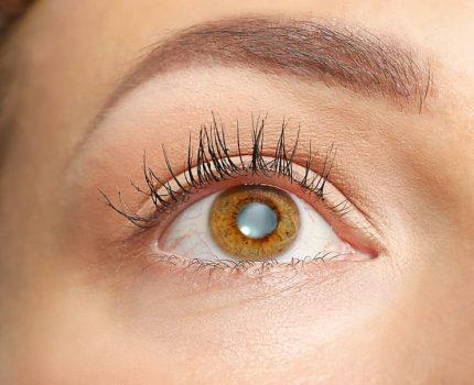La ceguera parcial y total y sus medidas preventivas